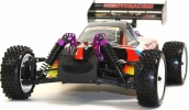 RC 1/10 4x4 Electric Buggy (Night Flame)