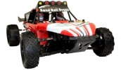 Brushless RC Race Buggy (Dirt Whip)